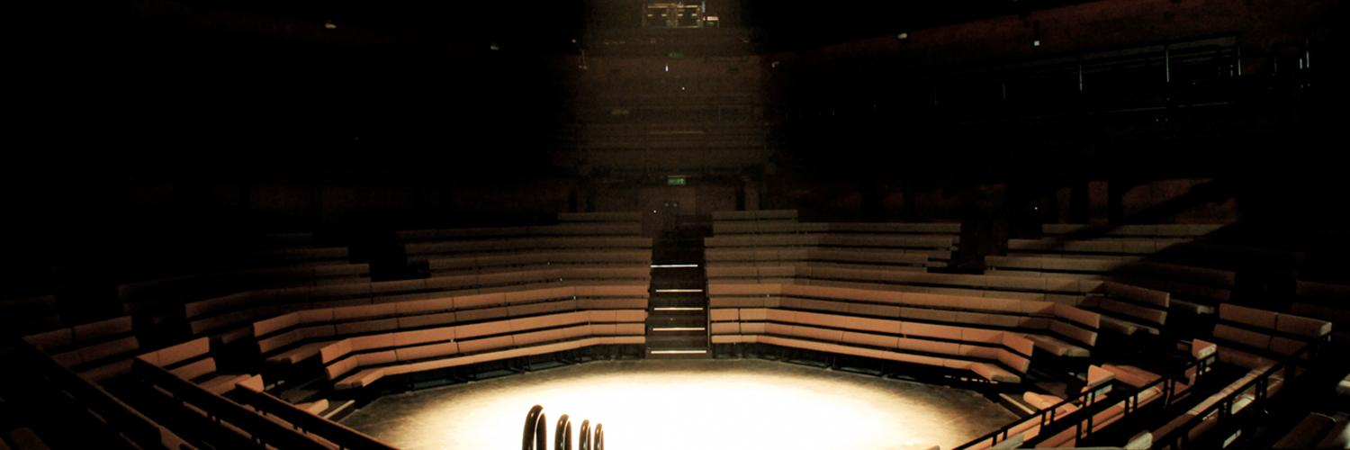 Empty Young Vic auditorium - image by Philip Vile