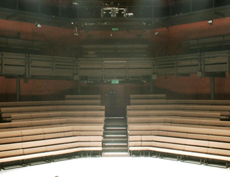 The main auditorium at the Young Vic