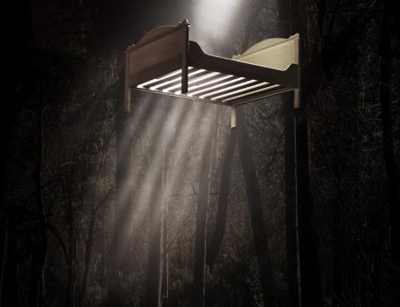 A bed is suspended high above the ground. Great shafts of light shine through the slats of the bed from above, reaching the middle of the image and fading away into the dusty, dark space below. Behind and around the bed, we can make out a forest scene: tall, thin tree trunks and branches and a bed of leaves or grass below. The image is flooded with an autumnal, brown-ish wash.